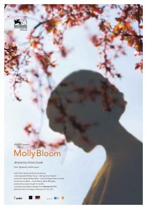 molly bloom poster
